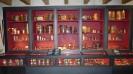 musee et train des cevennes_259